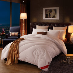 南极人新疆棉花被子冬被春秋被床上用品被垫床褥棉花被长绒棉棉被 新疆棉花被 150*200cm/4斤