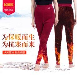 天鸿雅达中老年   女款保暖裤  3102