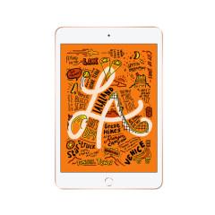 苹果 iPad mini5平板电脑2019款7.9英寸 金色 WLAN版 官方标配 WLAN版 64