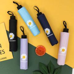 黑胶铁塔/花朵雨伞